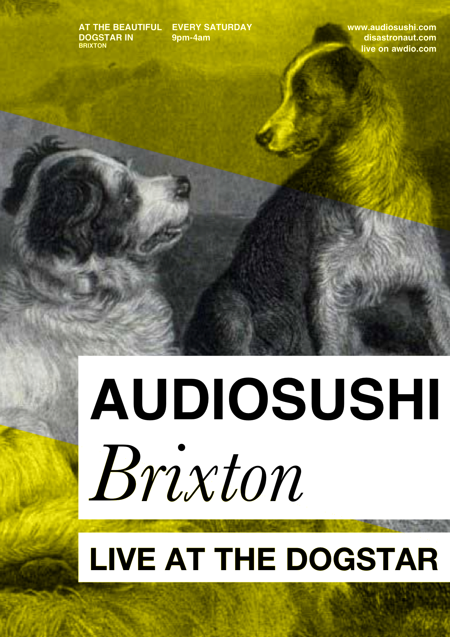 Audiosushi / Disastronaut London